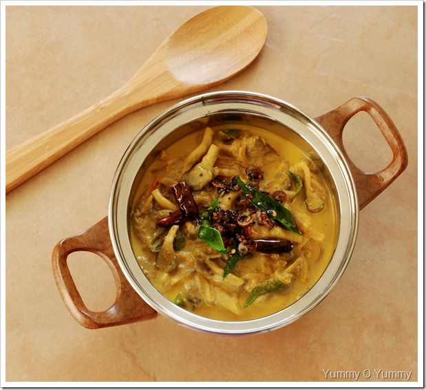 Oyster Mushroom Stew   Indian Cuisine   Pinterest