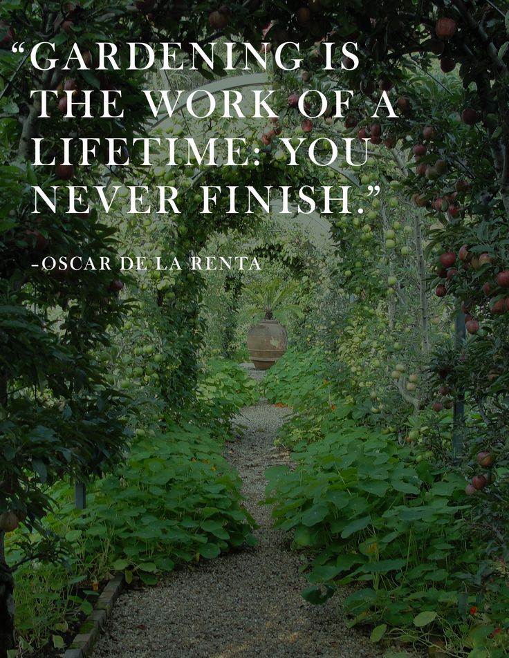 "Oscar-de la Renta - ""Gardening is the work of a lifetime. You never finish.""  #Quotes #OscardelaRenta #Gardening via @KraylFunch @AnAppealingPlan"