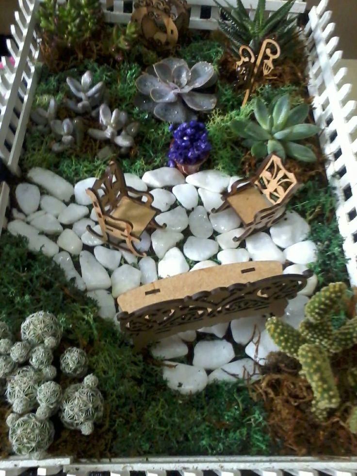 mini jardim suculentas:Mini Jardim com Cactos e suculentas.