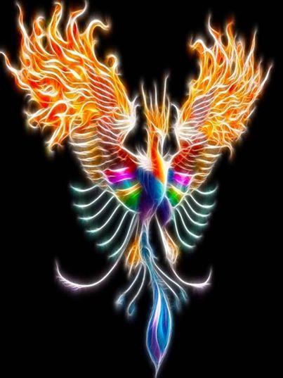Beautiful phoenix images thoughts beauty art pinterest