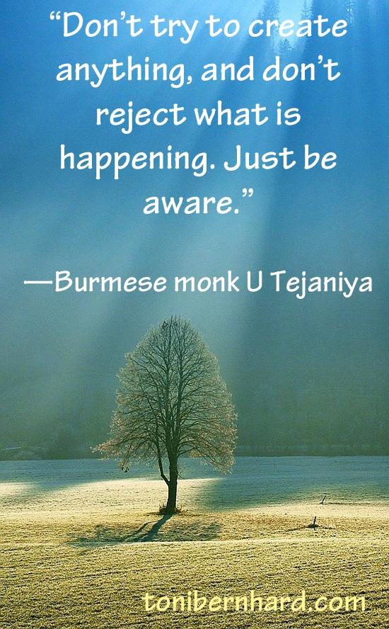 Burmese monk and teacher U Tejaniya