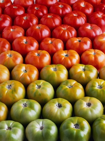 , White Corn, Cherry Tomato and Yellow Pepper Salad with Purple Basil ...