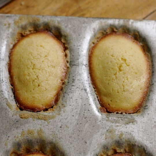 How to Make Classic French Madeleines Cooking Lessons from The Kitchn ...