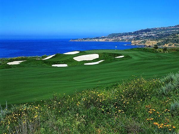 Torrey Pines Golf Course | Golf Courses | Pinterest