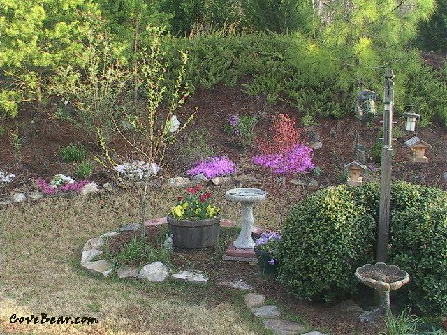 backyard bird sanctuary gardening pinterest