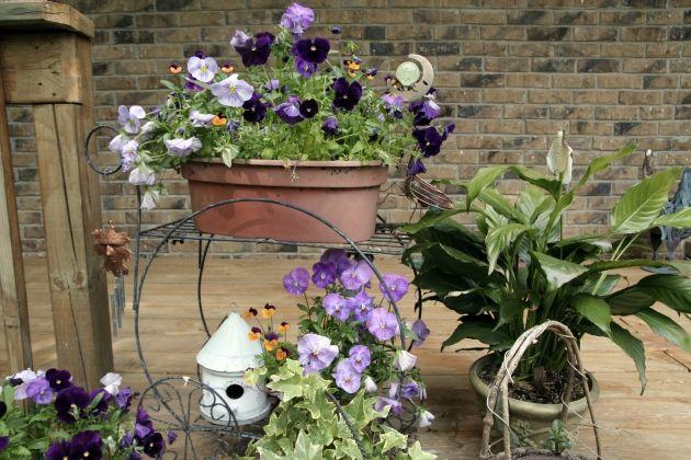 adornos para decorar el jardin decorar con flores