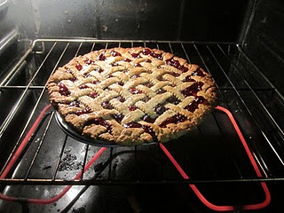 Homemade Cranberry & Wild Blueberry Pie - with a tutorial, videos ...