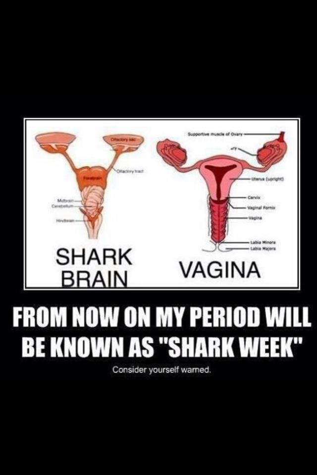 "From now on my period will be known as ""Shark week."" Because this never stops being awesome"