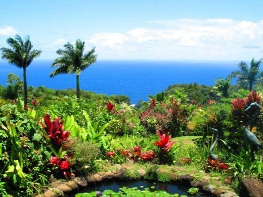 Garden Of Eden Botanical Gardens In Maui Favorite Places