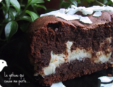 Chocolate cake with coconut filling | Cakes | Pinterest