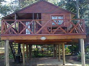 Pin by elizabeth murphy on down size cabin ideas pinterest Log cabin homes on stilts