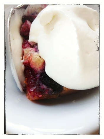 Mixed Berry Cobbler w Homemade Whipped Cream! www ...