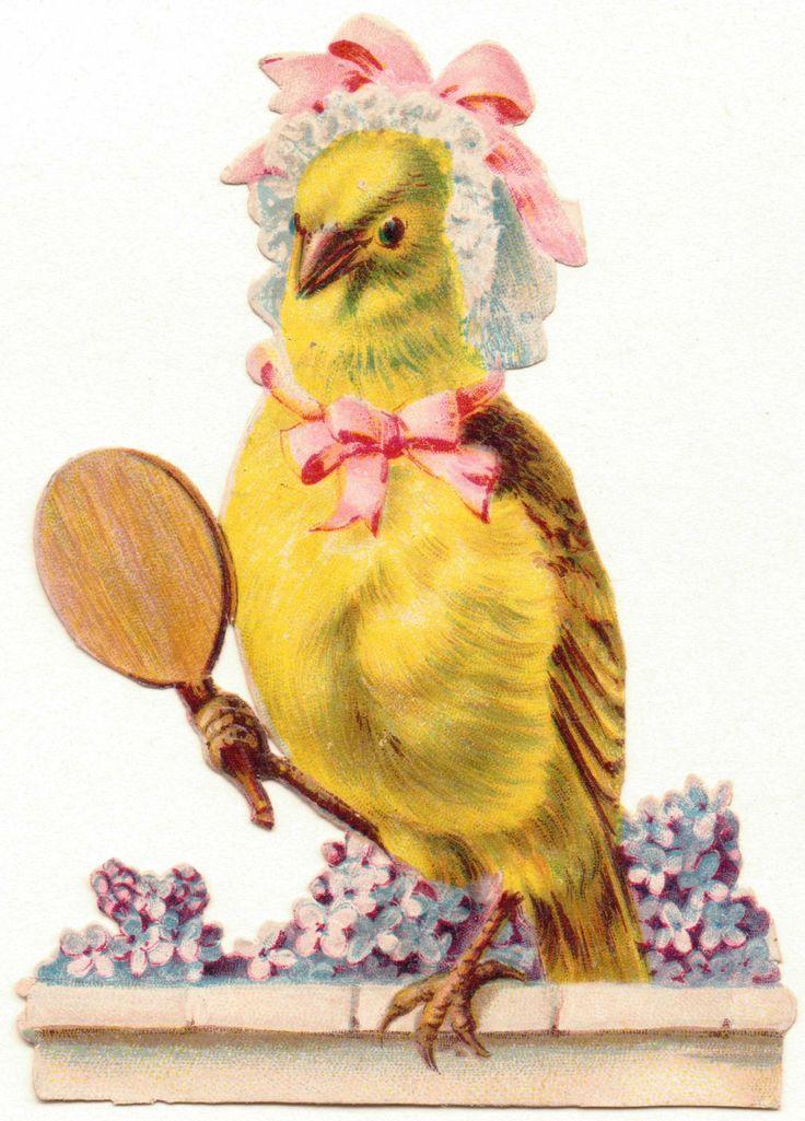 Oblaten-Glanzbilder-scrap-chromo: Schöne Vogeldame -  um 1900   de.picclick.com