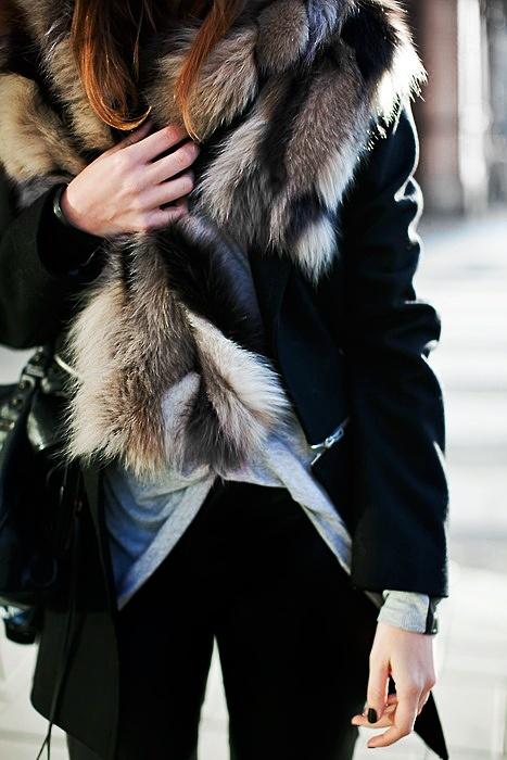 ~ fur ~