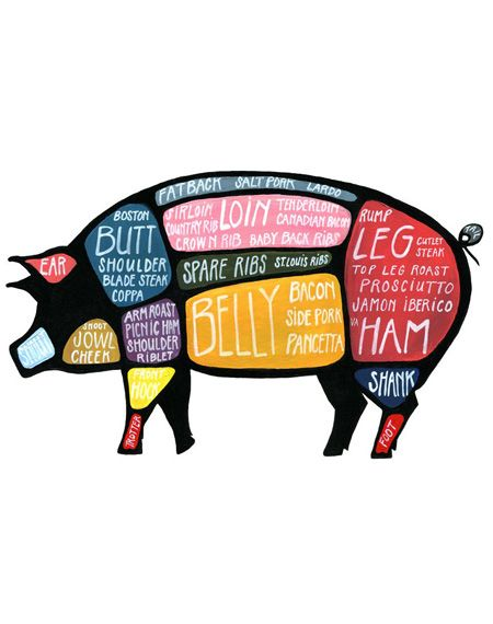 pig parts | live to love my kiddos. 4h & ffa | Pinterest