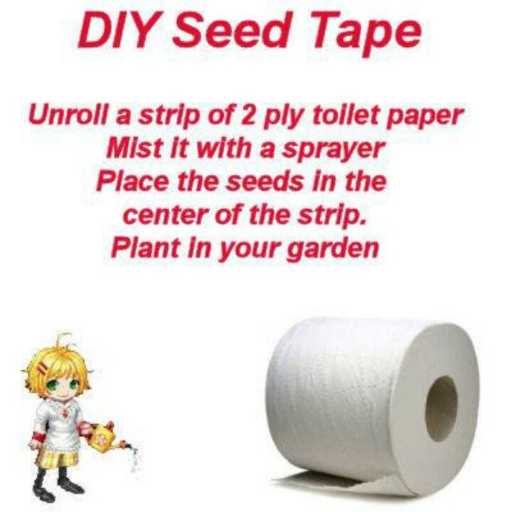 Seed tape | Home: Garden & Yard | Pinterest