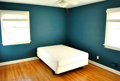 peacock blue walls!