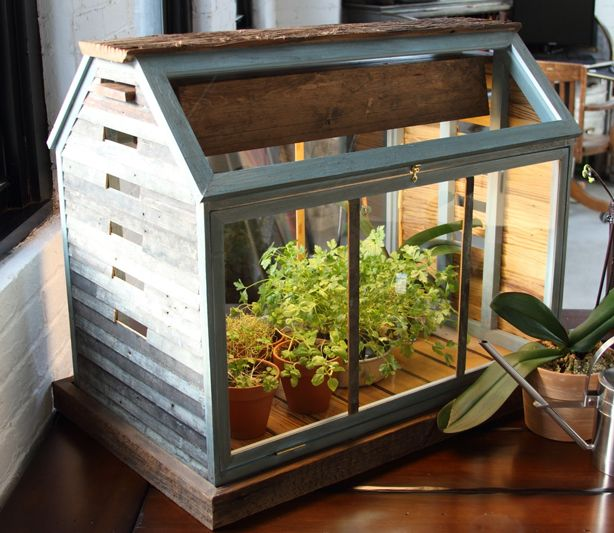 Terrarium hello house pinterest for How to make a small indoor greenhouse