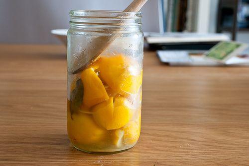 ... lemons meyer lemons preserved lemons salt preserved meyer lemons