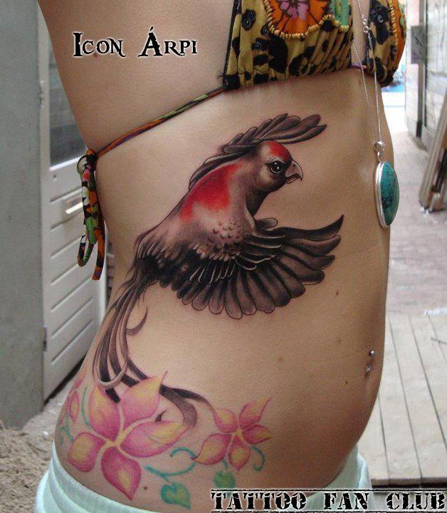 Bird of paradise tattoo - photo#22