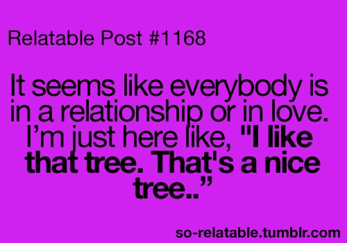 Such a nice tree...