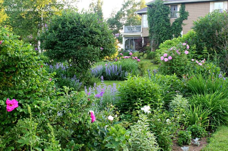 Pin By Laurie Shoemaker On Gorgeous Gardens Pinterest