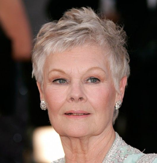 Judi Dench Short Hairstyle How To Cut | HAIRSTYLE GALLERY
