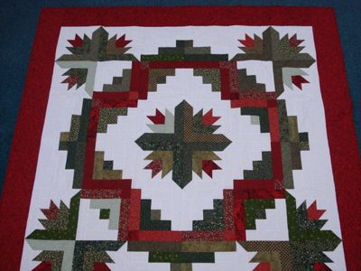 Highlights from the 2014 Tucson, Arizona Quilt Fiesta