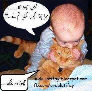 Urdu Latifay: Funny Baby & Cat, Baby & Cat funny Pictures, Bili ...