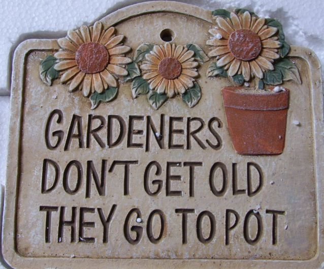 gardening quotes pinterest