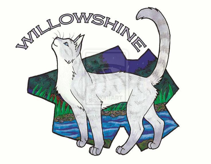Pinterest Willowshine Warriors