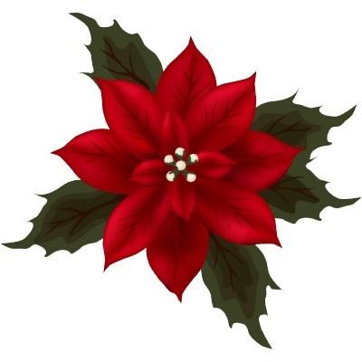 poinsettia example | Design III - Holiday Card Ideas | Pinterest