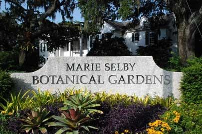 Marie Selby Botanical Gardens Sarasota Floridays