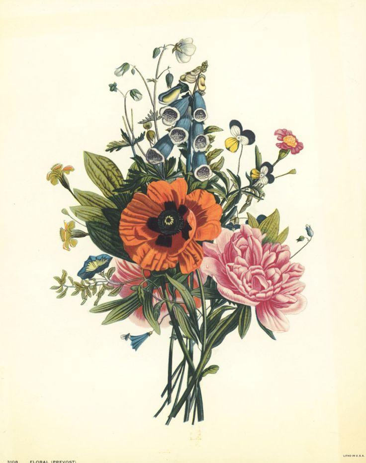 vintage botanical tattoo  Tumblr