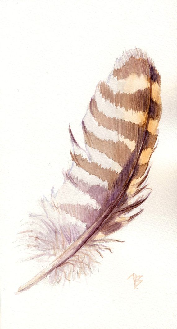 Watercolor Feather ORIGINAL Lavender Feat...
