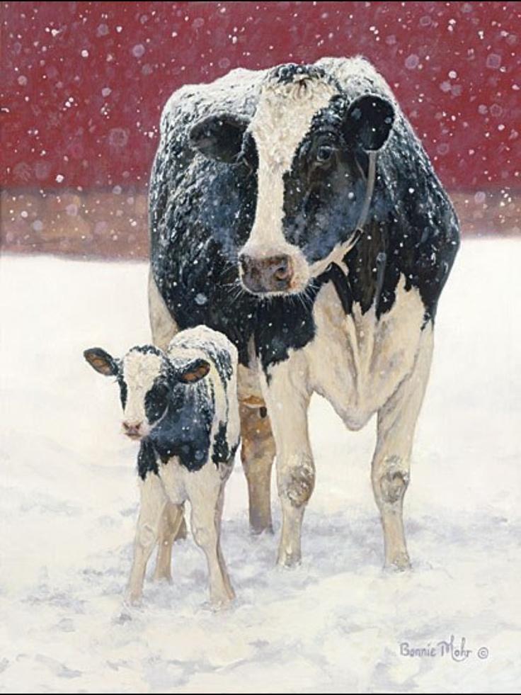 Winter moos   Cows   Pinterest I Love Moo Cow
