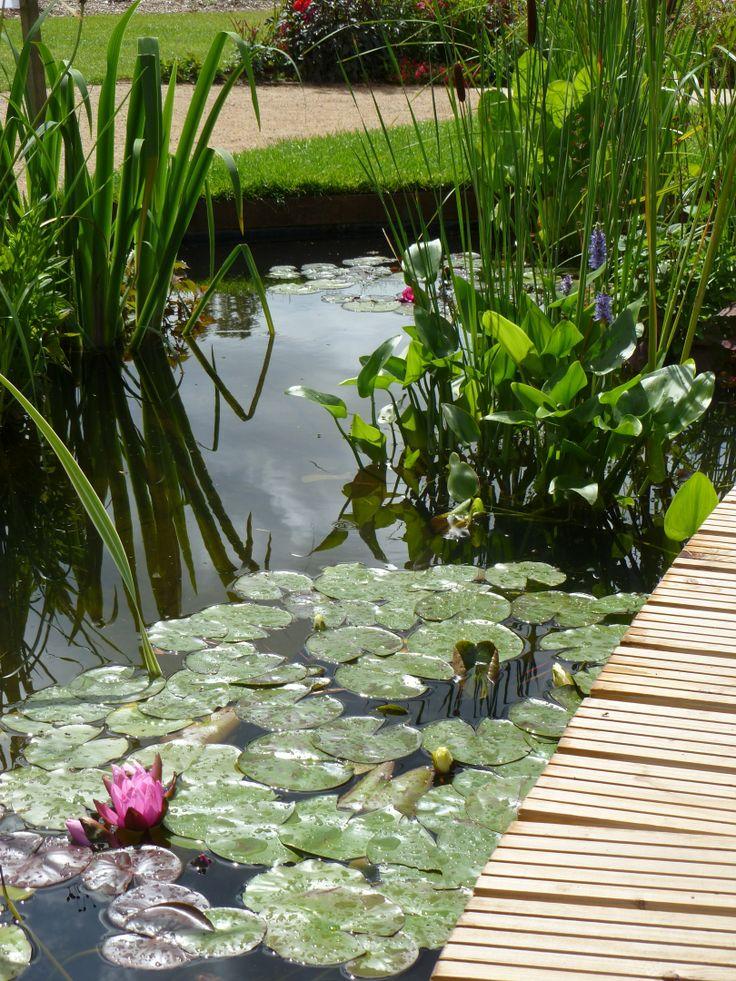 301 moved permanently for Pip probert garden designer