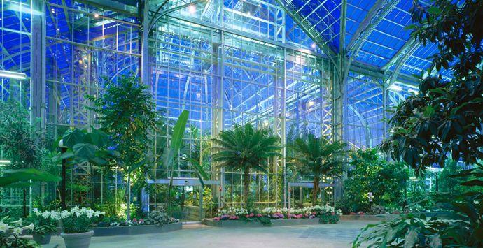 Botanical Gardens Dc Washington D C Pinterest