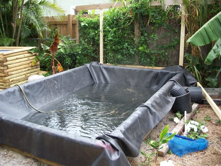 Pin by sandi davis on landscaping pinterest for Above ground pond