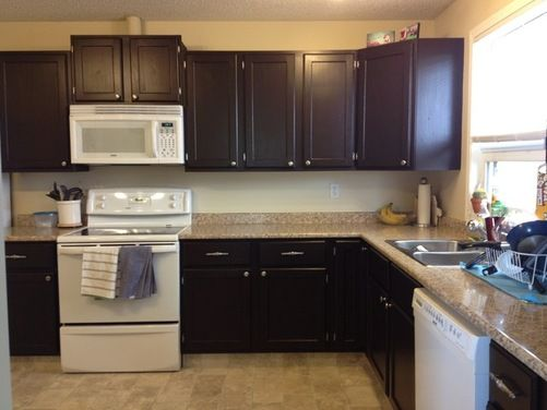 painted kitchen cabinets houzz fix in up horn point
