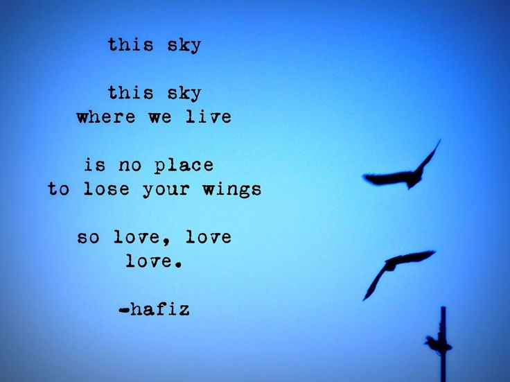 hafiz quotes on gratitude - photo #27