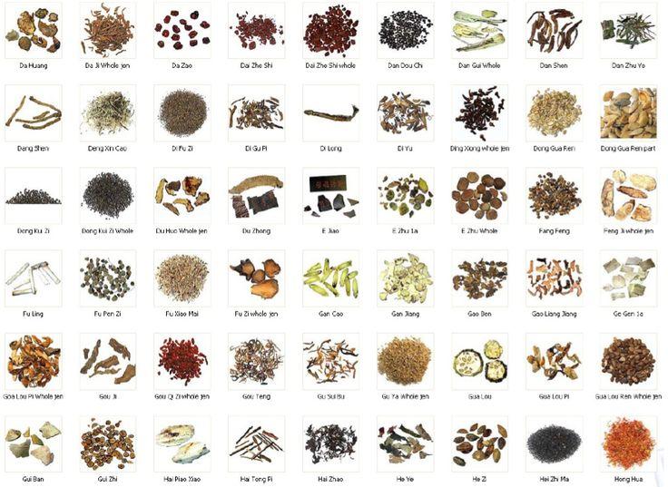 Medicinal herbs chart medicinal herbs natural health