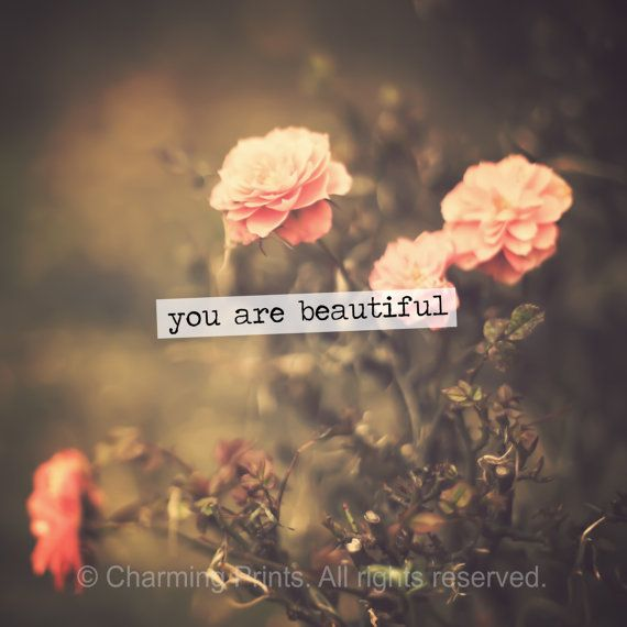 Rose You Are Beautiful Quotes Quotesgram