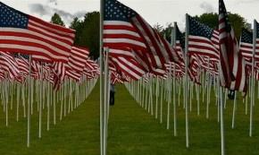 memorial day flags arlington national cemetery