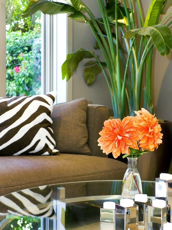 Living room with brown couch zebra print and orange courtney baker