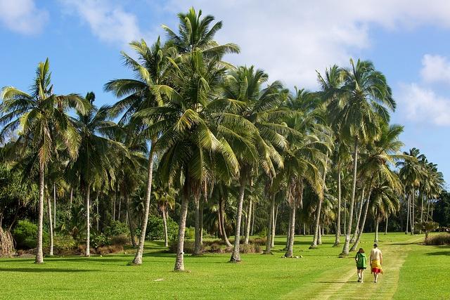 Kahanu Gardens Maui Pinterest