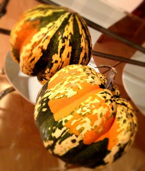 Vegan alternative to Turkey - stuffed carnival squash! by Amy Ippoliti ...