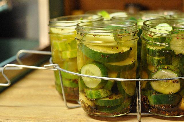 Garlic dill pickles | Recipes | Pinterest