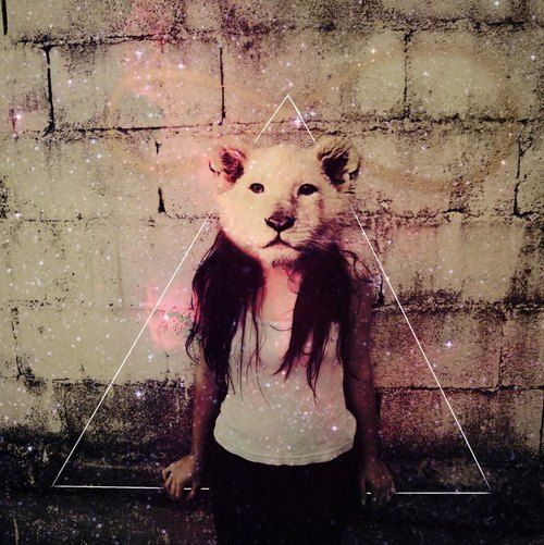 animal head tumblr party - photo #4