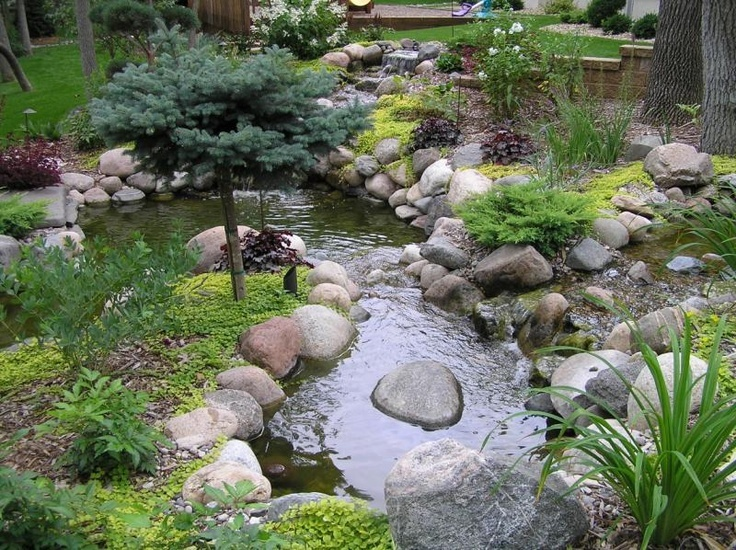 Yard water feature gardening pinterest